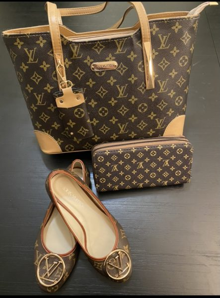 lady's-bag-purse-and-shoe